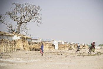 Mafa, un camp pour personnes déplacées dans l'Etat de Borno, au nord-est du Nigéria, en janvier 2018.