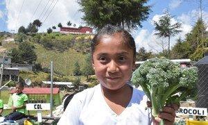 La FAO promueve en las escuelas primarias de México las buenas prácticas contra el sobrepeso y la obesidad.