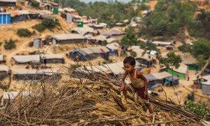 Estudo marca dois anos desde a chegada a Bangladesh de cerca de 745 mil civis rohingya.