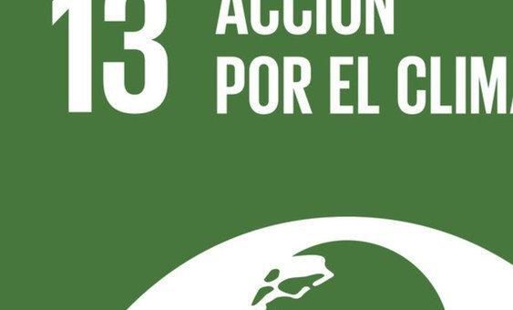 Objetivo de Desarrollo 13: Acciones contra el cambio climático.