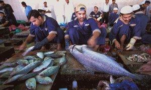 Trabajadores migrantes en un mercado de pescados en Dubai, Emiratos Árabes Unidos