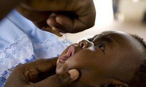 Estratégia adotada inclui também ampliar o lançamento da nova vacina oral contra a pólio