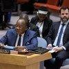 François Louncény Fall, le Représentant spécial du Secrétaire général pour l'Afrique centrale, devant le Conseil de sécurité (photo d'archives).