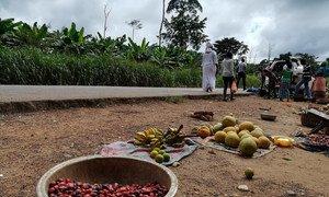 Mradi wa FAO ambao unaunga hatua za kilimo zinazingatia tabianchi nchini Cote D'ivore.