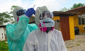 Watafiti nchini Sierra Leone wakichunguza virusi vya Ebola kwa popo