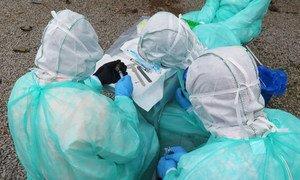 Watafiti wakichunguza virusi vya Ebola kwa popo