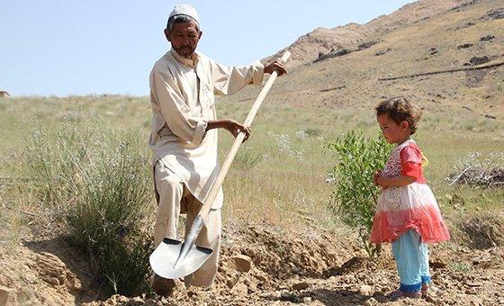 خير (يسار) هو أب لسبعة أطفال، لم يعد بإمكانه إطعامهم. دمر الجفاف أرضه في مقاطعة دايكوندي بأفغانستان؛ وهذا العام لم يحصد شيئا. (يونيو 2018)