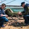 Инспекция рыболовецкого судна в Румынии. Апрель 2018 года.