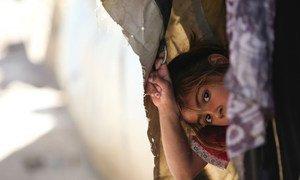 Une fille réfugiée palestinienne résidant au refuge collectif de l'UNRWA au camp de Khan Dunoun, en Syrie (2015).