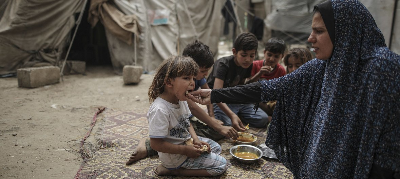大规模的贫困和失业使加沙百姓的粮食不安全状况日益加剧,持续不断的食品援助对保护脆弱巴勒斯坦难民的生计而言至关重要。
