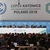 فعاليات مؤتمر الأمم المتحدة لتغير المناخ في كاتوفيتسا في بولندا.