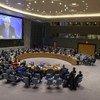 El Consejo de Seguridad se reúne sobre la situación en Yemen.