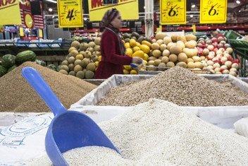 Estoques mundiais de cereais devem alcançar 895,5 milhões de toneladas em 2021.