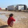تضرر النازحون في مخيم العريشة العشوائي في محافظة الحسكة السورية، بالأمطار الغزيرة والفيضانات.