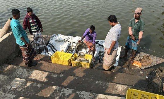 Fechamento de restaurantes e hotéis em muitos países gerou uma queda na demanda por peixe fresco