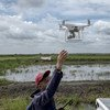 A person launches a drone in a field in the Philippines. Information from drones can be used to develop reports on the extent and health of vegetation and, in the event of natural disasters, damage.