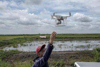 As informações dos drones são usadas para desenvolver relatórios sobre a extensão e a saúde da vegetação e, no caso de desastres naturais, danos.