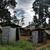 A site for Internally-displaced persons in the Democratic Republic of the Congo.