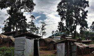 As mortes aconteceram no território Yumbi, na província de Mai-Ndombe, alegadamente, na sequência de confrontos entre as comunidades Banunu e Batende.