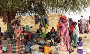New arrivals in Gubio Camp in Maiduguri, Nigeria, following the December 2018 attack in Baga. As the camp doesn't have enough shelters, people are sleeping on mats under trees.