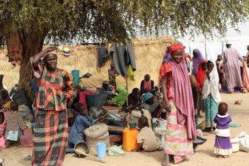 Cerca de 134 mil pessoas foram obrigadas a deixar suas casas devido ao conflito no nordeste da Nigéria.