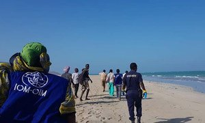 Staff from the IOM's Obock response centre and local officials respond to assist migrants in distress off the coast of Djibouti. (file photo)