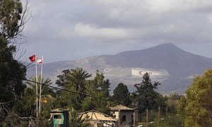 Since fighting erupted between Greek and Turkish Cypriots in 1974, the area dividing Greek Cyprus from its Turkish counterpart, abandoned and left virtually untouched by human activity, has fallen within a buffer zone controlled by the United Nations Peacekeeping Force in Cyprus (UNFICYP). (file)