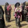 Syrie, 26 janvier 2019 : des enfants et leurs familles contraints de fuir leur domicile entreprennent un long et difficile périple vers le camp d'Al-Hol.