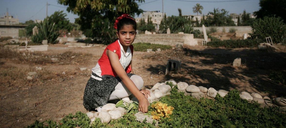 Una niña en Rafah, en la Franja de Gaza, se arrodilla sobre la tumba de su madre y hermanos.