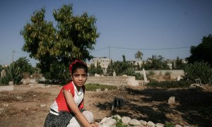 Teenage girl in Rafah, southern Gaza Strip, kneels beside her mother and brothers' graves.