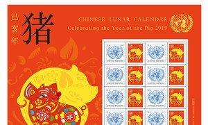 联合国邮政发行的2019农历猪年邮票。