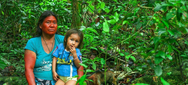 Quienes trabajan en la protección de la tierra, los recursos naturales y los derechos de los pueblos indígenas son los que más riesgos corren de ser criminalizados por sus actividades..