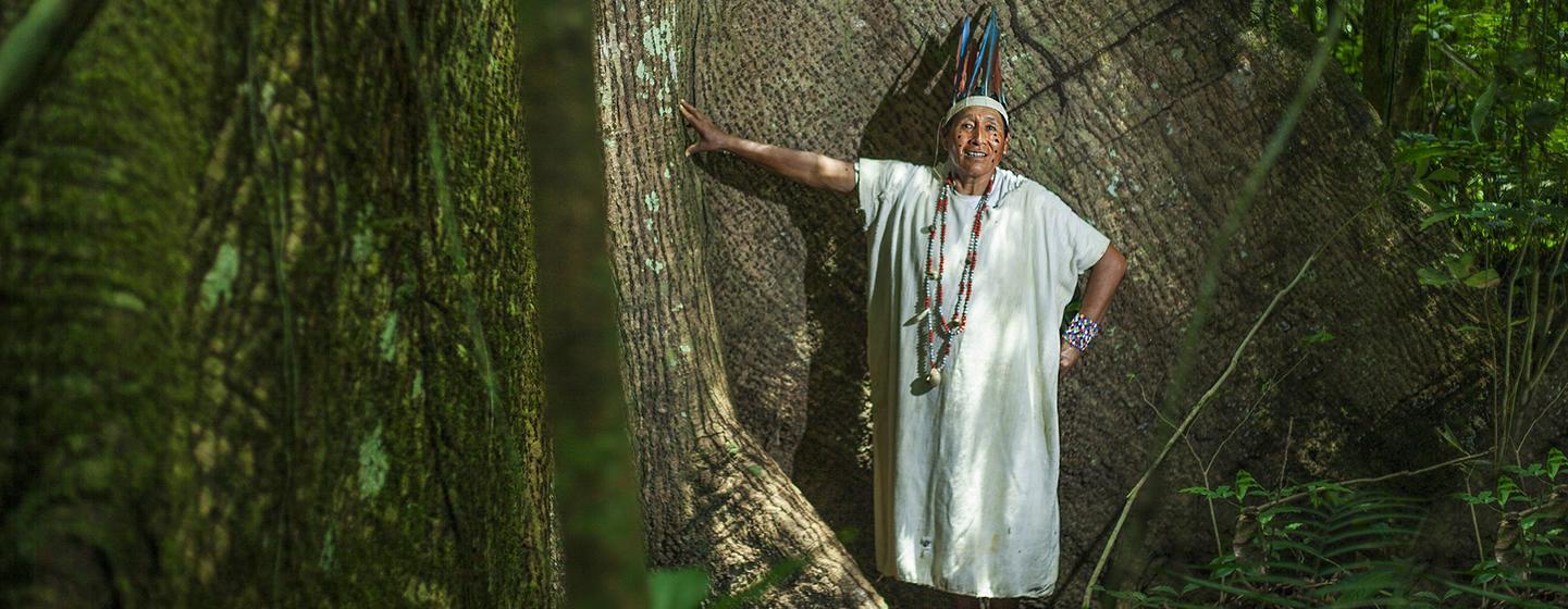 Comunidade Amarakaeri na Amazônia, no Peru. Alta comissária disse haver redução da aplicação da lei empaíses daAmazônia e do Pantanal