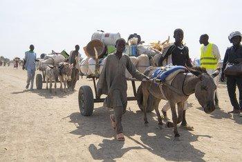 在1月的最后两周,大约3万5000名尼日利亚人越过东北部边境逃到喀麦隆。( 2019年2月1日)