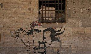 Граффити на стене разрушенного дома в Бенгази. С момента свержения Каддафи прошло более семи лет