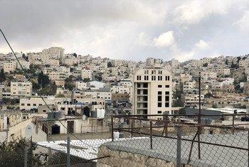 Des maisons palestiniennes et des colonies israéliennes dans la zone H2 à Hébron, en Cisjordanie.