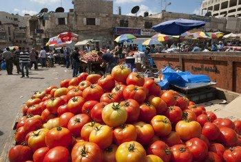 Un stand de tomates sur un marché près de la mosquée principale de Ramallah, en Cisjordanie
