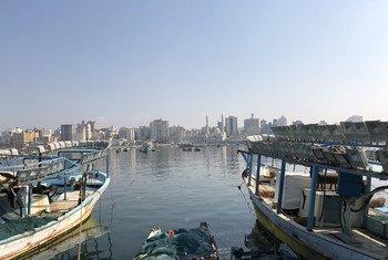 Porto de Gaza