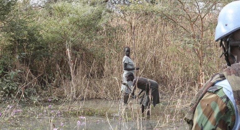 Cascos azules de las Naciones Unidas protegen a mujeres de Sudán del Sur mientras ellas recogen leña en Bentiu.