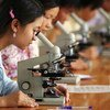 Niñas estudiantes de materias científicas en Vietnam. Aunque más niñas que nunca van a la escuela, están infrarrepresentada en las asignaturas de ciencia y tecnología.