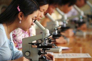 A ONU Mulheres trabalha com homens em todo o mundo para romper estereótipos e promover igualdade de gênero