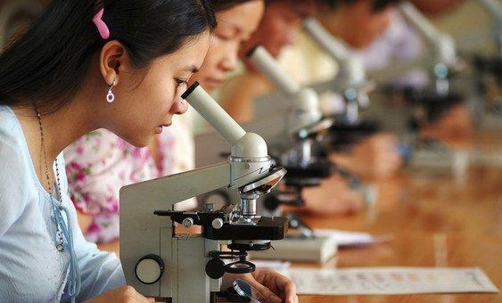 Стундентки во Вьетнаме. Несмотря на успехи в сфере доступа женщин к образованию, они все еще составляют меньшинство среди представителей технических профессий.