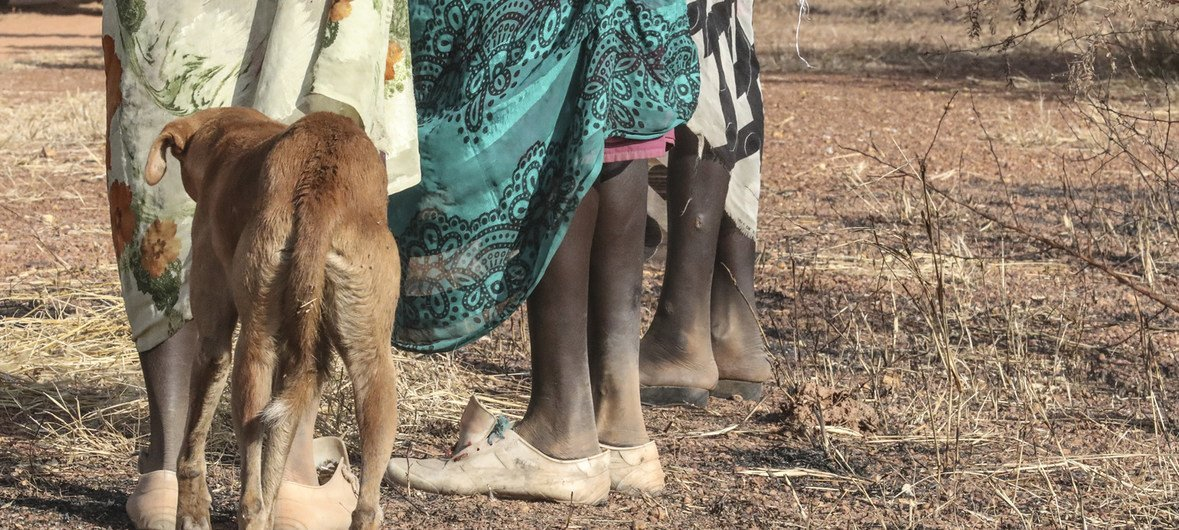 Shocking incidents of rape in South Sudan, have led to an intensification of road patrols by the UN Mission, UNMISS, to try and protect women and girls while walking.