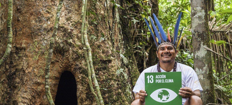 Nas florestas andinas, as comunidades indígenas estão plantando árvores medicinais, e que são fonte de alimento e de água.