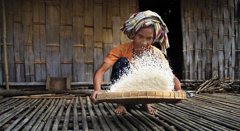 Os povos indígenas lutam contra a mudança climática todos os dias. As suas florestas armazenam pelo menos um quarto de todo o carbono das florestas tropicais, cerca de 55 trilhões de toneladas métricas. Isso equivale a quatro vezes o total de emissões globais de carbono em 2014.
