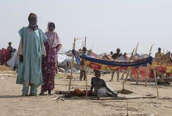 Des milliers de réfugiés du Nigéria sont arrivés dans le village de Goura, dans le nord-est du Cameroun, fuyant les attaques de Boko Haram.