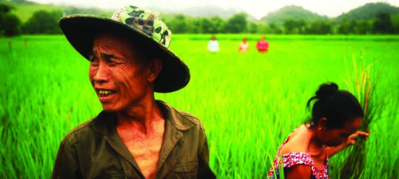 Des agriculteurs au Laos, Etat membre de la coopération Sud-Sud.