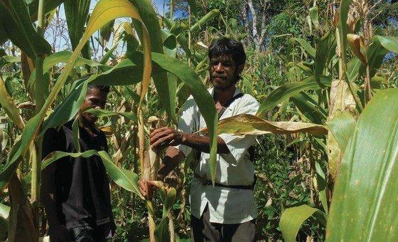 Secretário-geral destacouapoio das Nações Unidasao fórum que inclui Timor-Leste