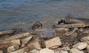由于缺乏电力,污水未经处理就流入了加沙沿岸的大海中。 污水污染了沿海含水层,而这些含水层是加沙居民的主要水源。