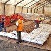 ONU Moçambique fornece ajuda humanitária para as dezenas de milhares de pessoas deslocadas no país pelo ciclone tropical Idai